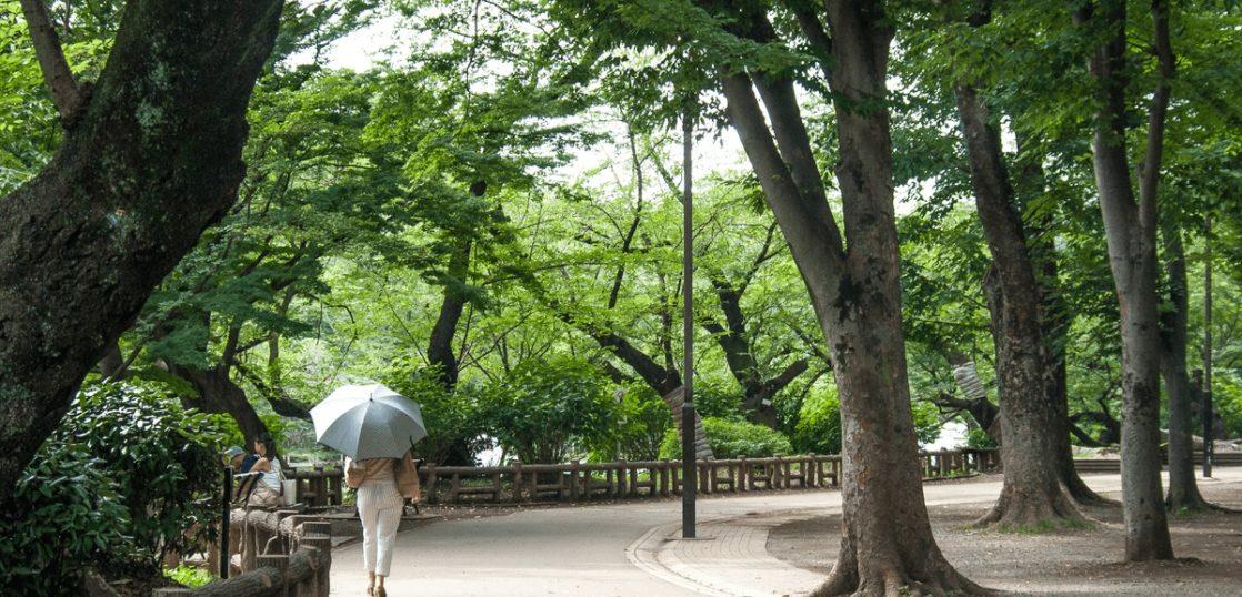 東京都武蔵野市 井の頭公園