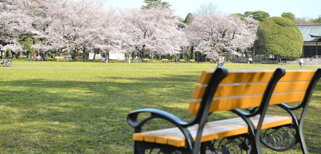 東京都小金井市 小金井公園