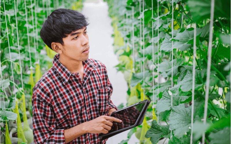 特定技能『農業』試験スケジュール